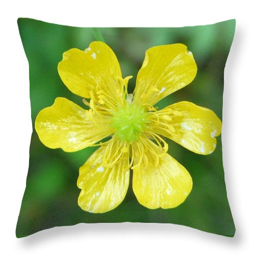 Flower Throw Pillow featuring the photograph Creeping Buttercup by Valerie Ornstein