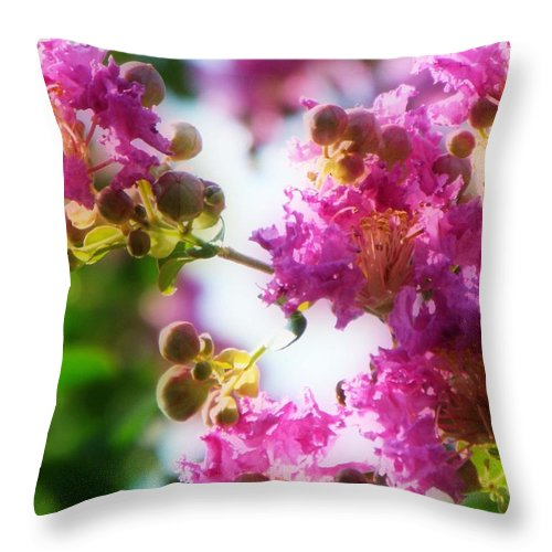 Crepe Myrtle Throw Pillow featuring the photograph Crepe Myrtle by KaFra Art