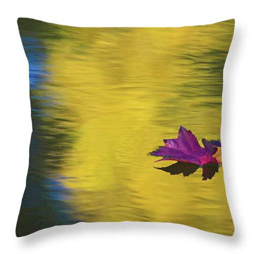 Fall Color Throw Pillow featuring the photograph Crimson And Gold by Steve Stuller
