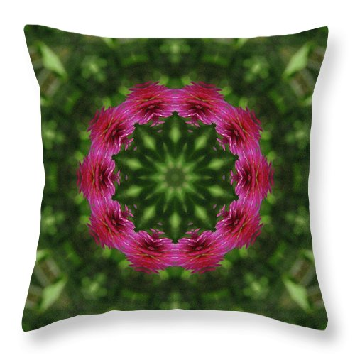 Texas Throw Pillow featuring the photograph Crimson Clover Kaleidoscope by Robyn Stacey
