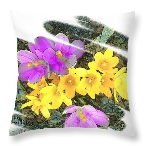 Crocus Throw Pillow featuring the photograph Crocus by Rose Guay