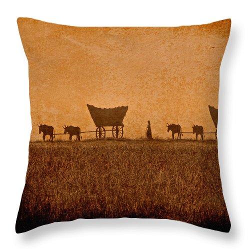Kansas Throw Pillow featuring the photograph Crossing Kansas by Lynn Sprowl