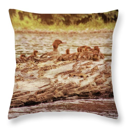 Bird Throw Pillow featuring the photograph Crossing The River by JAMART Photography