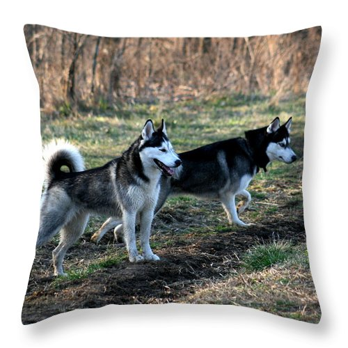 Animal Throw Pillow featuring the photograph Crossing The Tracks by David Dunham
