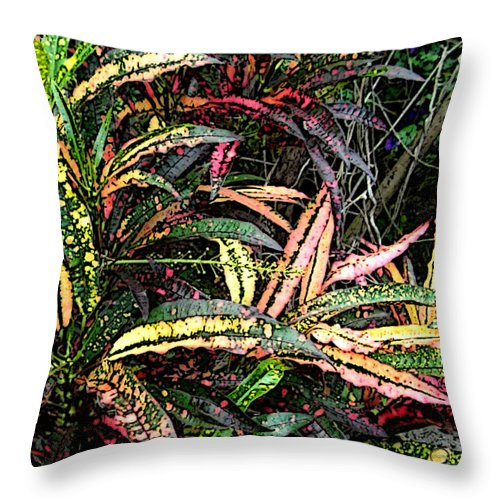 Square Throw Pillow featuring the digital art Croton 1 by Eikoni Images
