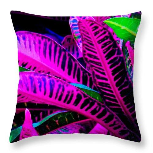 Croydon Plants Purple Green Throw Pillow featuring the photograph Croton by Ian MacDonald
