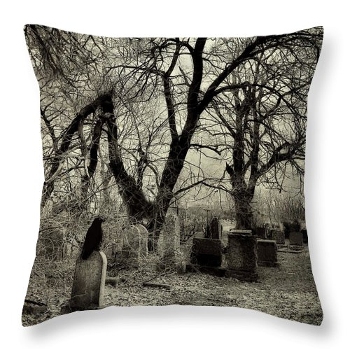 Crow Throw Pillow featuring the photograph Crow Waits On Tombstone by Gothicrow Images