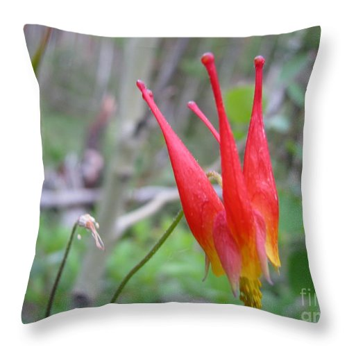 Flowers Of Colorado Throw Pillow featuring the photograph Crown by Amanda Barcon
