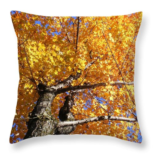 Trees Throw Pillow featuring the photograph Crown Fire by Dave Martsolf