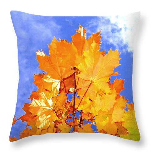Maple Leaves Throw Pillow featuring the photograph Crown Of Gold by Will Borden