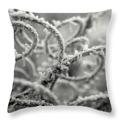 Wire Throw Pillow featuring the photograph Crystal Springs by JoJo Photography