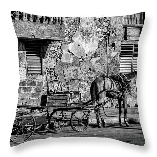 Cuban Horse Power; Cuban; Horse; Power; Horse And Carriage; Carriage; Hp; Cuba; Photography & Digital Art; Photography; Photo; Photo Art; Art; Digital Art; 2bhappy4ever; 2bhappy4ever.com; 2bhappy4evercom; Tobehappyforever; Throw Pillow featuring the photograph Cuban Horse Power BW by Erron