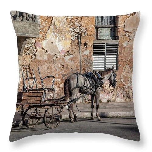 Cuban Horse Power; Cuban; Horse; Power; Horse And Carriage; Carriage; Hp; Cuba; Photography & Digital Art; Photography; Photo; Photo Art; Art; Digital Art; 2bhappy4ever; 2bhappy4ever.com; 2bhappy4evercom; Tobehappyforever; Throw Pillow featuring the photograph Cuban Horse Power FC by Erron