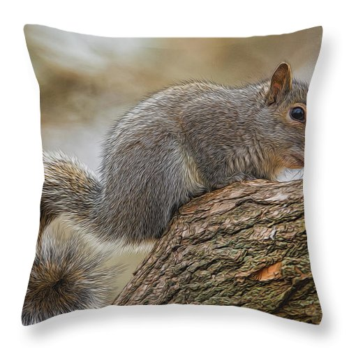 Squirrel Throw Pillow featuring the photograph Curly by Cathy Kovarik