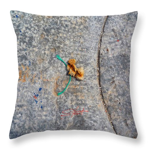 Fishing Net Throw Pillow featuring the photograph Curve And Counter Curve by Charles Stuart