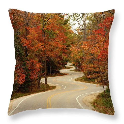 3scape Throw Pillow featuring the photograph Curvy Fall by Adam Romanowicz