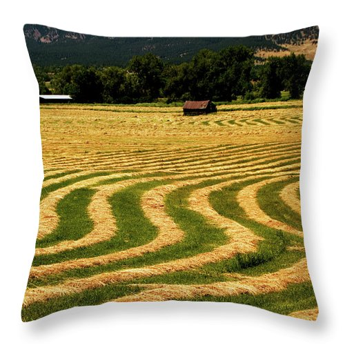 Hay Field Throw Pillow featuring the photograph Cut Hay In Field by Mark Ivins