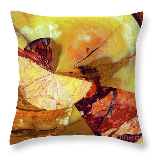 Abstract Throw Pillow featuring the photograph Cycle Of Life Squared by Regina Geoghan