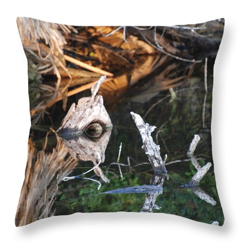 Wood Throw Pillow featuring the photograph Cyclops by Rob Hans
