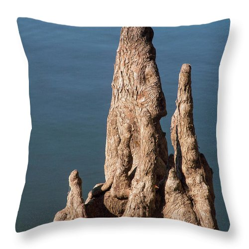 Reelfoot Lake State Park Throw Pillow featuring the photograph Cypress Knees by Bob Phillips