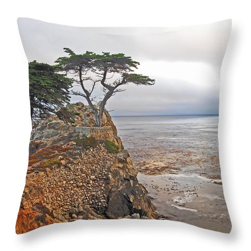 Cypress Throw Pillow featuring the photograph Cypress Tree At Pebble Beach by Gary Beeler