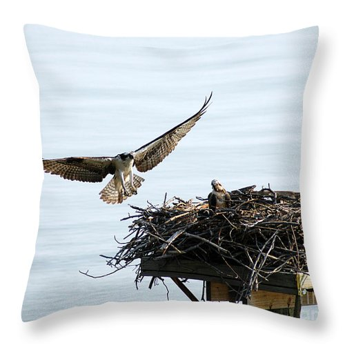 Clay Throw Pillow featuring the photograph Dads Home by Clayton Bruster