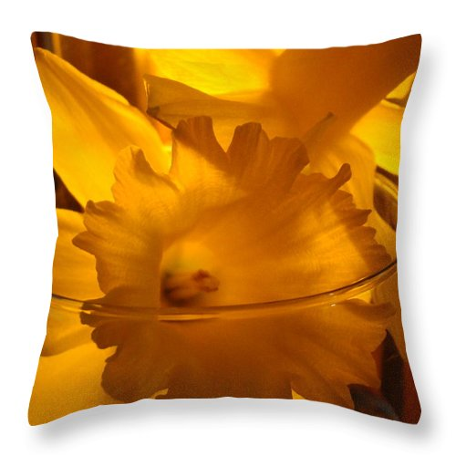 �daffodils Artwork� Throw Pillow featuring the photograph Daffodiil Flowers Evening Glow 9 Contemporary Modern Art Print Giclee by Baslee Troutman