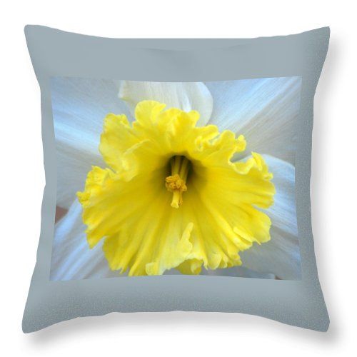 Daffodil Throw Pillow featuring the photograph Daffodil by Amy Fose