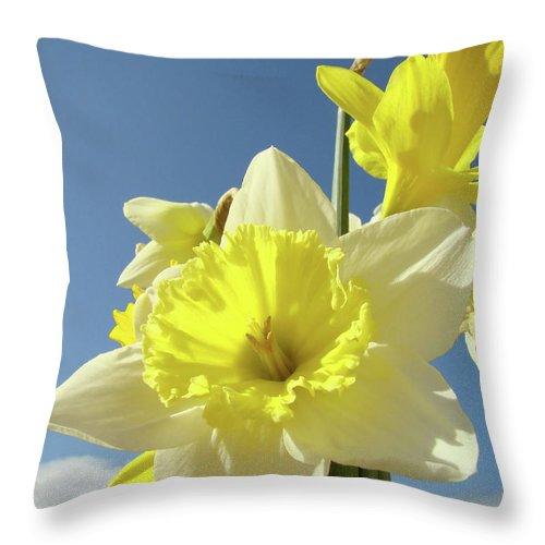 �daffodils Artwork� Throw Pillow featuring the photograph Daffodil Flowers Artwork Floral Photography Spring Flower Art Prints by Baslee Troutman