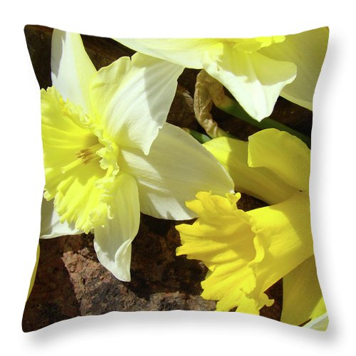 �daffodils Artwork� Throw Pillow featuring the photograph Daffodils Flower Bouquet Rustic Rock Art Daffodil Flowers Artwork Spring Floral Art by Baslee Troutman