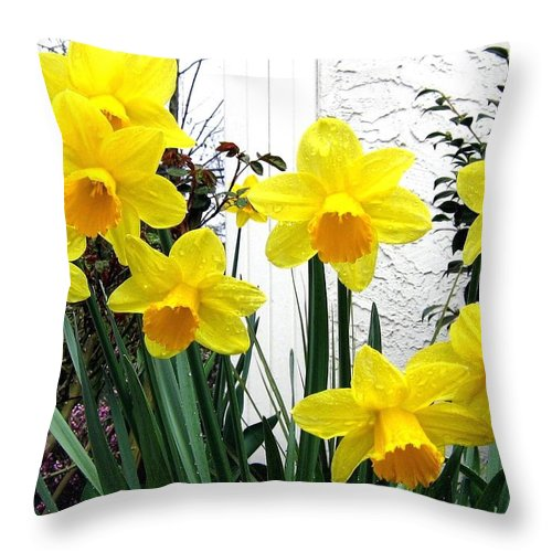 Daffodils Throw Pillow featuring the photograph Daffodils by Will Borden