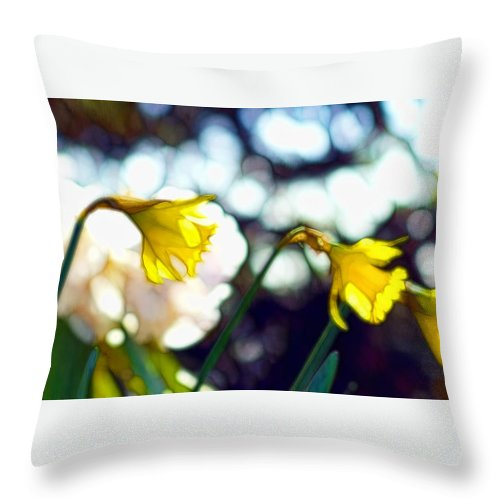 Flower Throw Pillow featuring the photograph Daffys by Cameron Wood