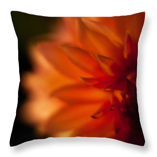 Dahlia Throw Pillow featuring the photograph Dahlia Fueur by Mike Reid