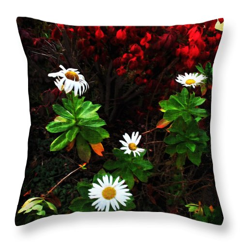Daisies Throw Pillow featuring the digital art Daisies At The Boathouse by Joan Minchak