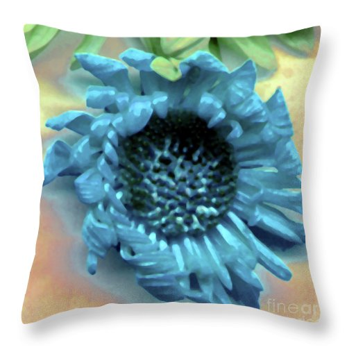 Throw Pillow featuring the photograph Daisy Blue by Heather Kirk