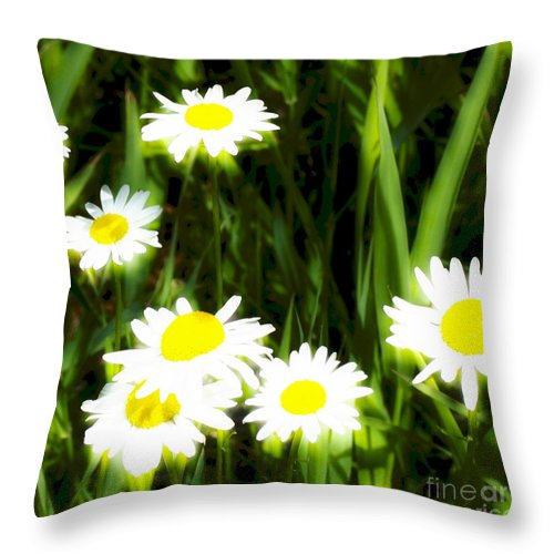 Daisies Throw Pillow featuring the photograph Daisy Dream by Idaho Scenic Images Linda Lantzy