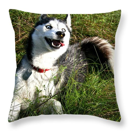 Dog Throw Pillow featuring the photograph Damn I Like It Out Here by David Dunham