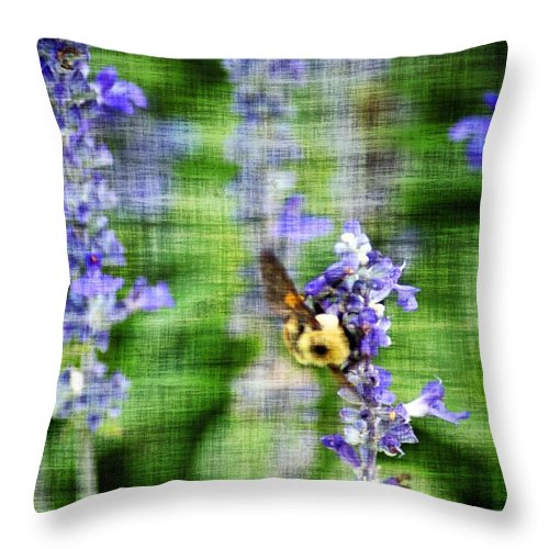 Bees Throw Pillow featuring the photograph Dance Of The Bubblebee by Donna Bentley