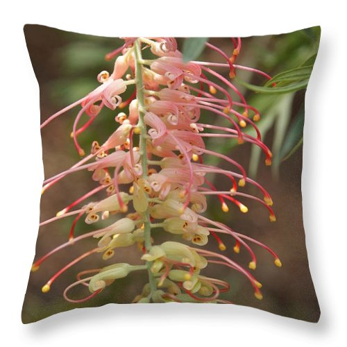 Floral Throw Pillow featuring the photograph Dancer by Shelley Jones