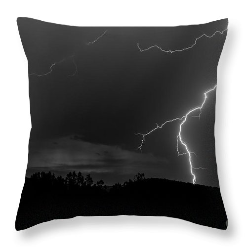 Natanson Throw Pillow featuring the photograph Dancing In The Night by Steven Natanson