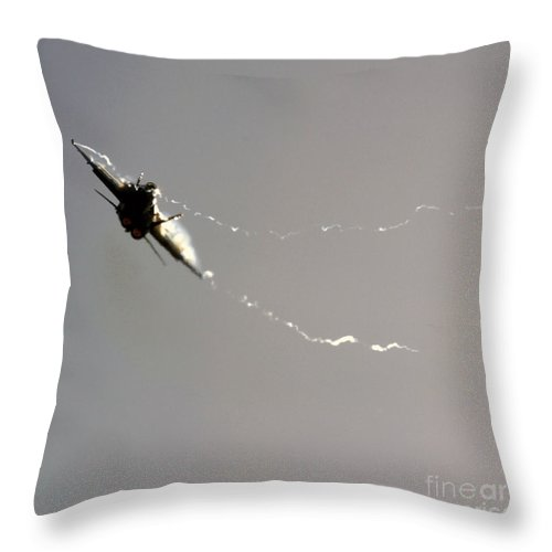 Axalp Throw Pillow featuring the photograph Dancing In The Sunshine by Angel Ciesniarska