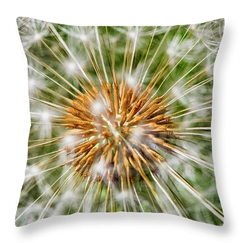 Dandelion Throw Pillow featuring the photograph Dandelion Explosion by Mary Raderstorf