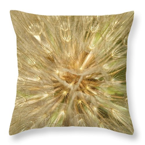 Dandelion Throw Pillow featuring the photograph Dandelion Seeds by Graham Elliott