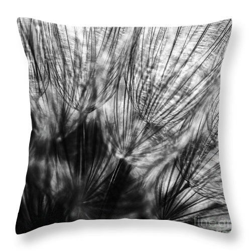 Allenfoto Throw Pillow featuring the photograph Dandelion Seeds I by Brad Allen Fine Art