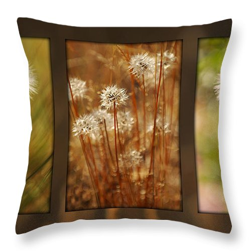 Dandelions Throw Pillow featuring the photograph Dandelion Series by Jill Reger