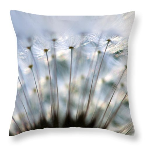 Flower Throw Pillow featuring the photograph Dandelion by Silke Magino