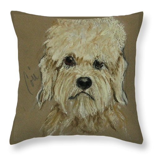 Dandie Dinmont Terrier Throw Pillow featuring the drawing Dandie by Cori Solomon