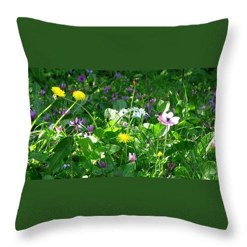 Dandilions Throw Pillow featuring the photograph Dandilions by Maria Joy