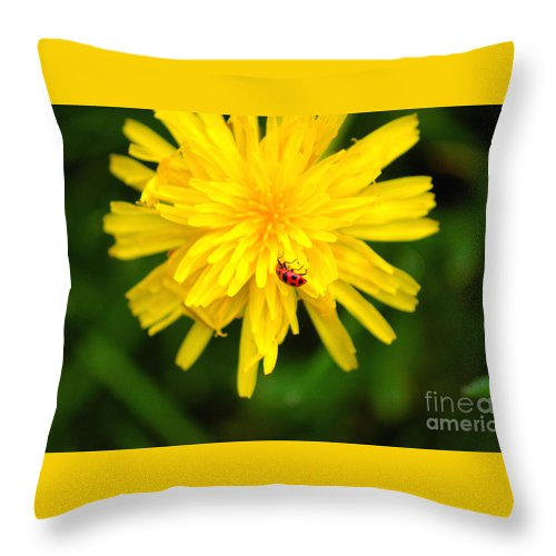 Dandelion Throw Pillow featuring the photograph Dandy Lady Bug by Elizabeth Stone