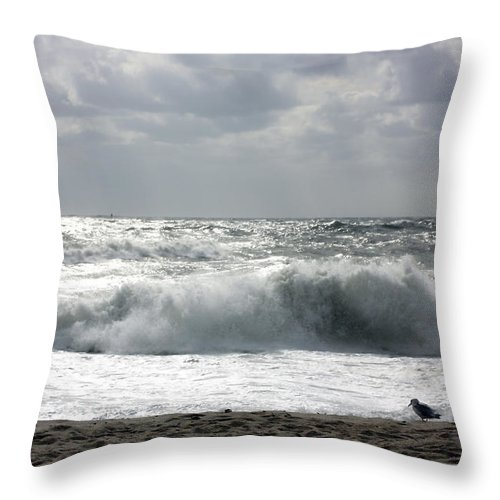 Landscape Throw Pillow featuring the photograph Dangerous Morning by Mary Haber